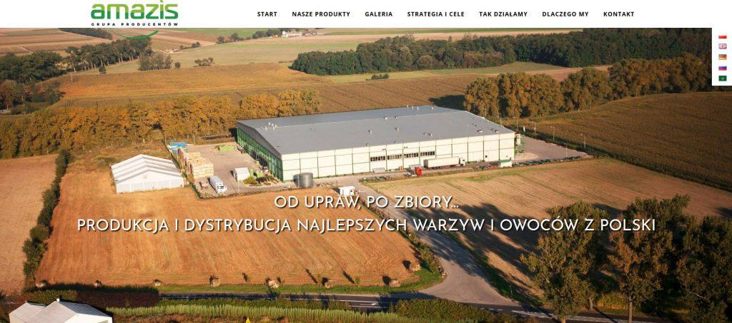 Nowa strona www – GP Amazis